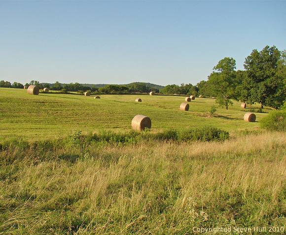Hay Bales on a Gently Rolling HIllside